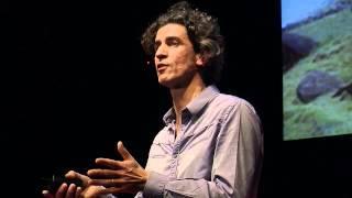 Y. Roudaut : Notre conception du monde nous interdit le monde de demain