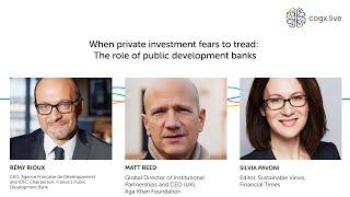 When private investment fears to tread: The role of public development banks