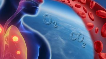 Comprendre la respiration
