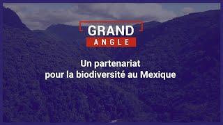Un partenariat pour la biodiversité au Mexique